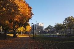 Podzimní neděle